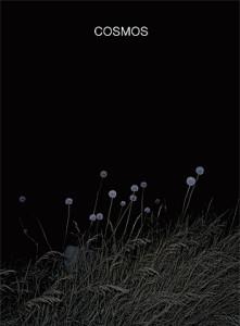 Cosmos par Bérangère Fromont publié par André Frère Éditions